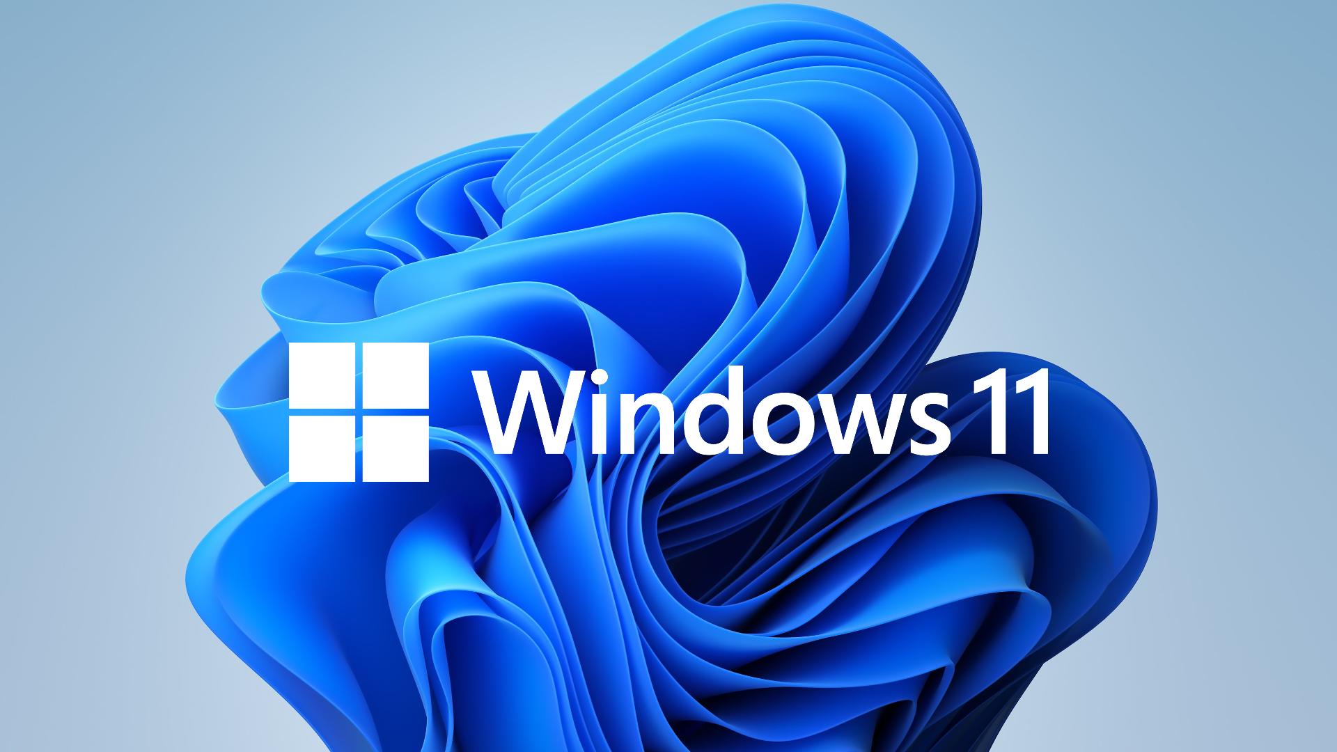 Windows 11 Logo