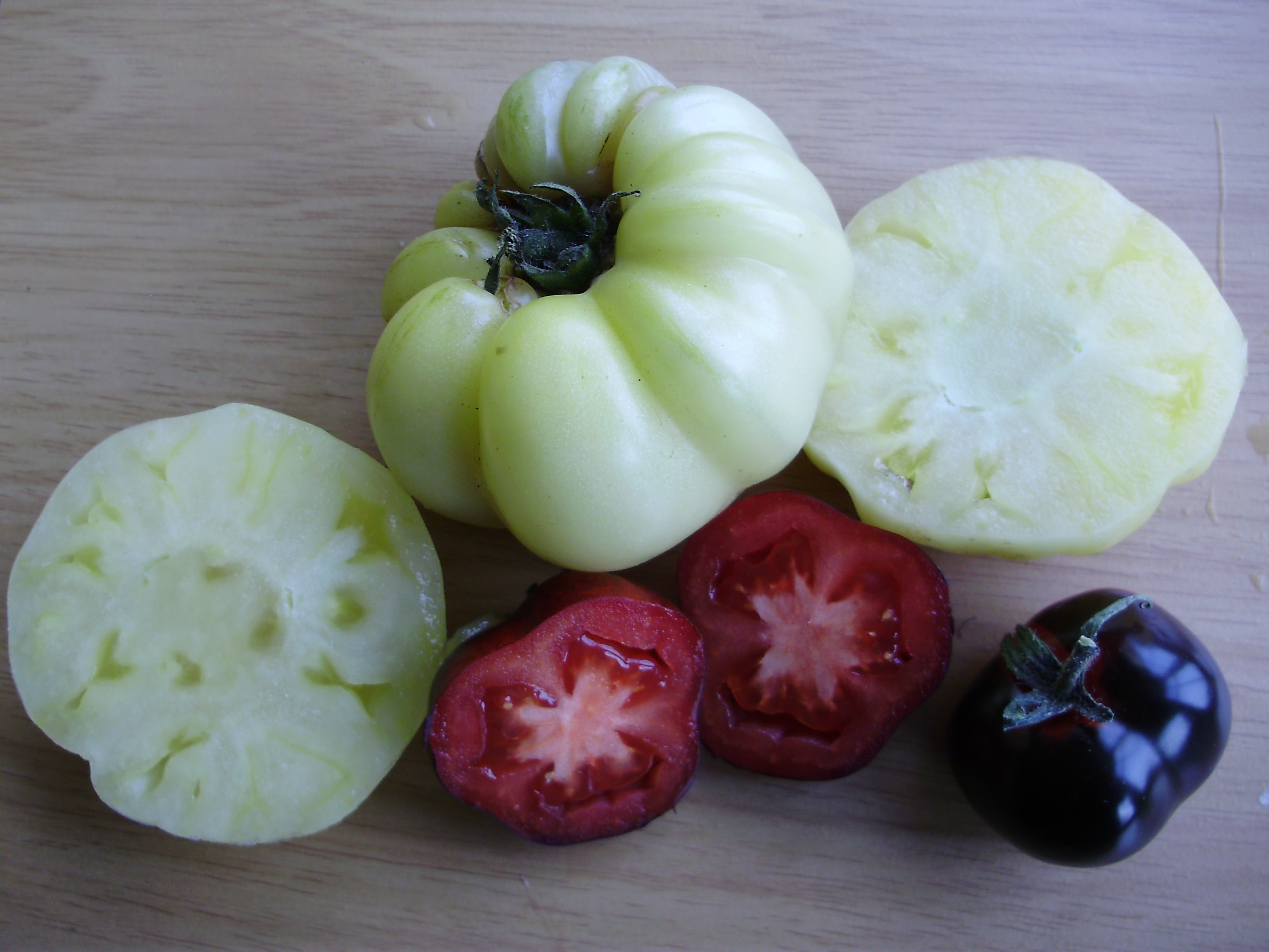 'Ebony and Ivory' - the contrasting colours of tomatoes Indigo Rose & White Queen