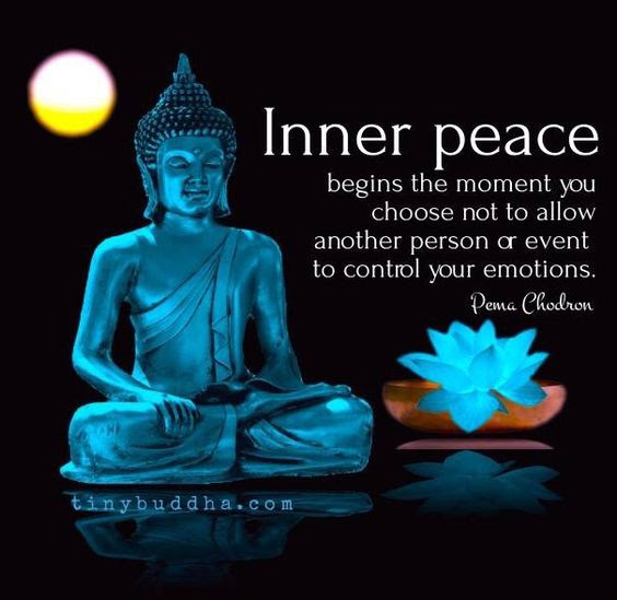 Inner Peace Begins The Moment You Choose Not To Allow Another Person To Control Your Emotions. ~Pema Chodren~