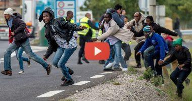 migrants-calais-380x200