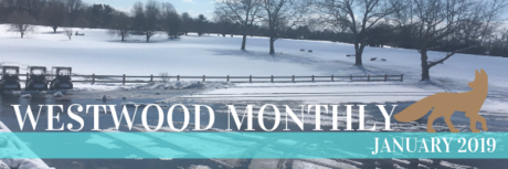 westwood monthly newsletter january 2019
