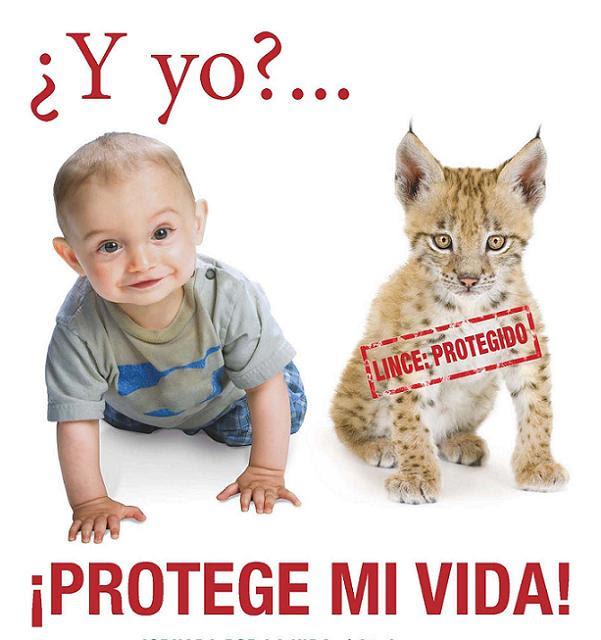 http://i.bssl.es/unomasenlafamilia/2012/01/provida.jpg