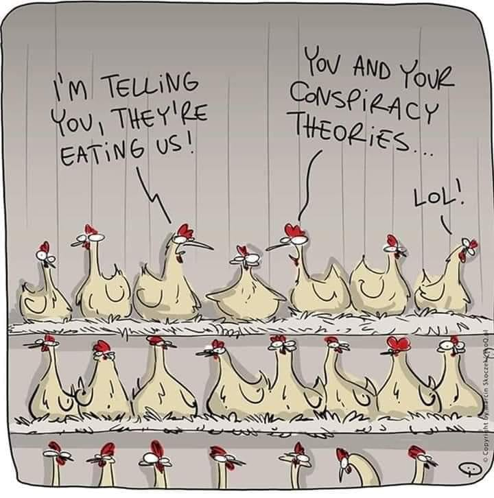 cartoon showing chickens