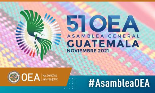 Guatemala propone lema de la Asamblea General de la OEA y que sea de modo virtual