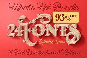 What's Hot Bundle vol.10 - 24 Fonts