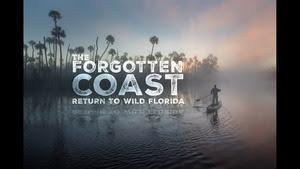 Forgotten Coast 2