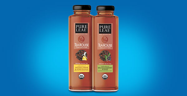Pure Leaf Tea House Collection Tea