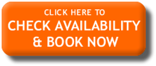 Image result for Check AVAILABILITY & BOOK Now orange images