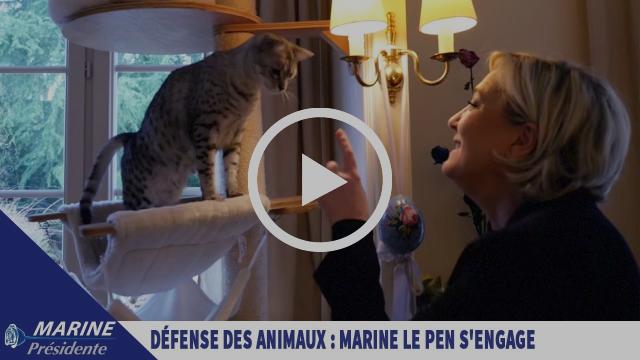 Défense des animaux : Marine Le Pen s'engage ! | Marine 2017