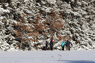 Cross-country skiers at Michigan Ski for Light's 2020 event