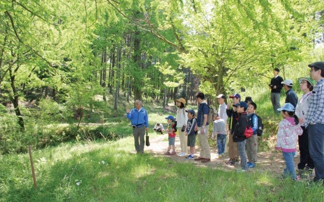 ウィードの森での散策