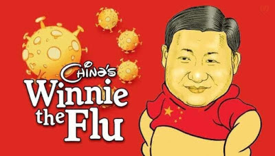 winnie the flu xi
