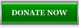 donate-now2 2