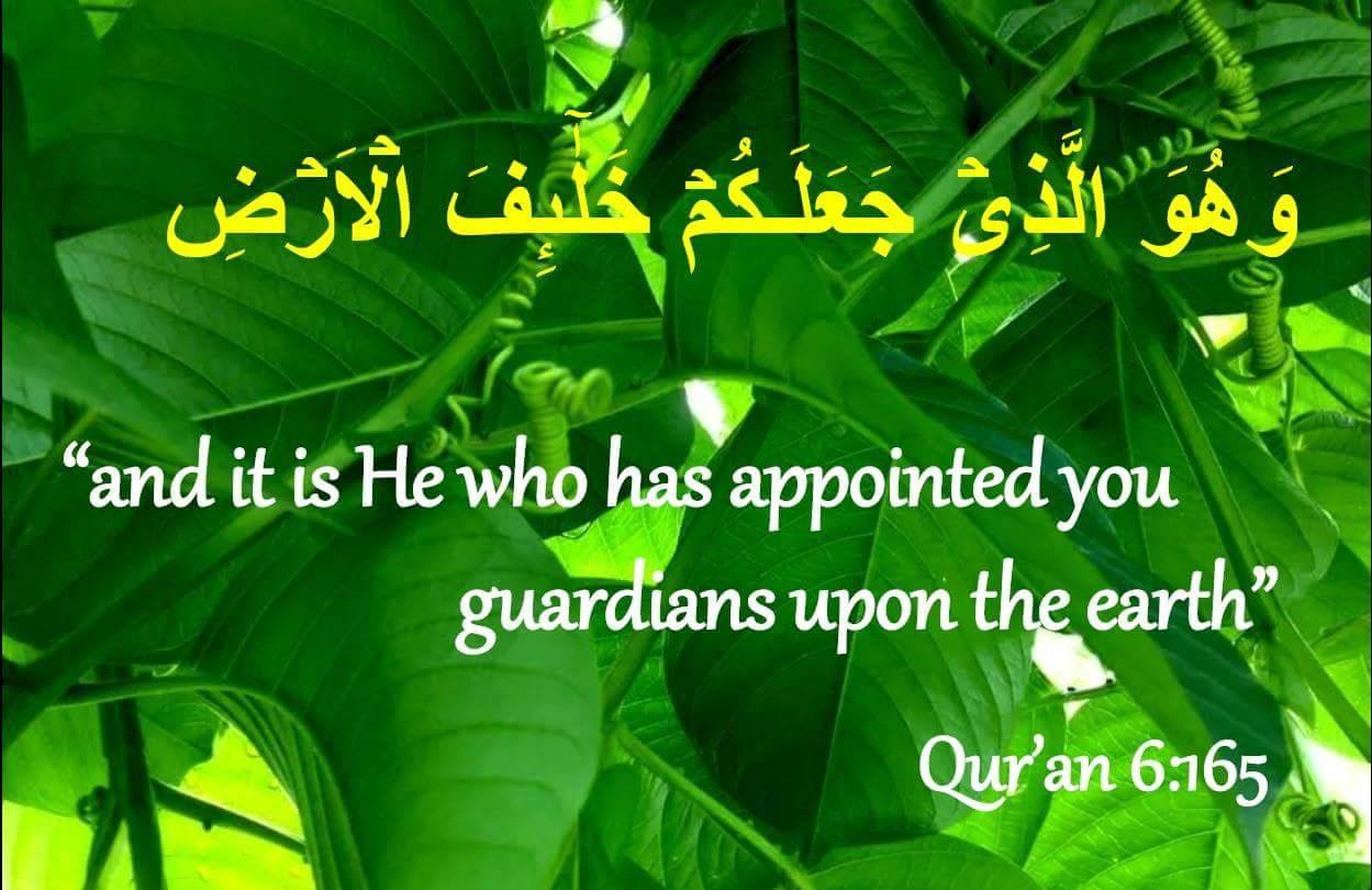 Green_Muslims-2.jpg