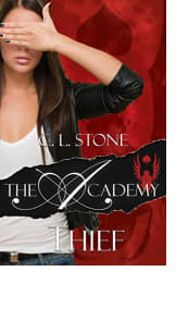 The Academy: Thief by C. L. Stone