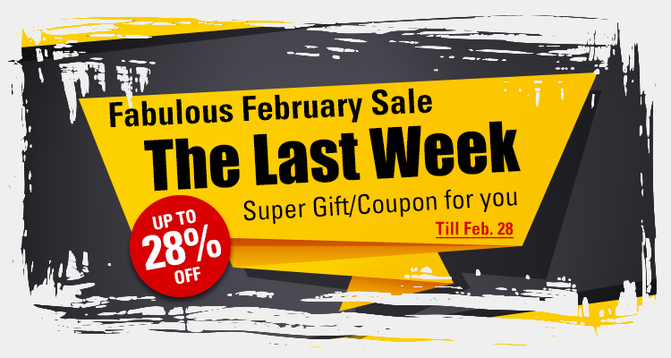 The Last Week February Sale with Up to 28% OFF & Free Gift/Coupon for Car DVD!