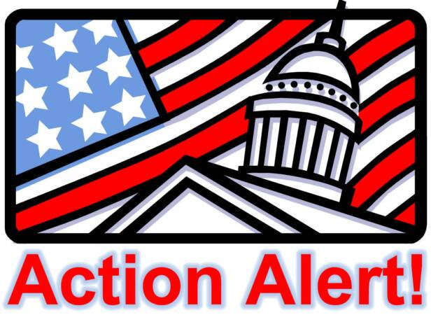 "Image result for congress ""Action Alert"" image"