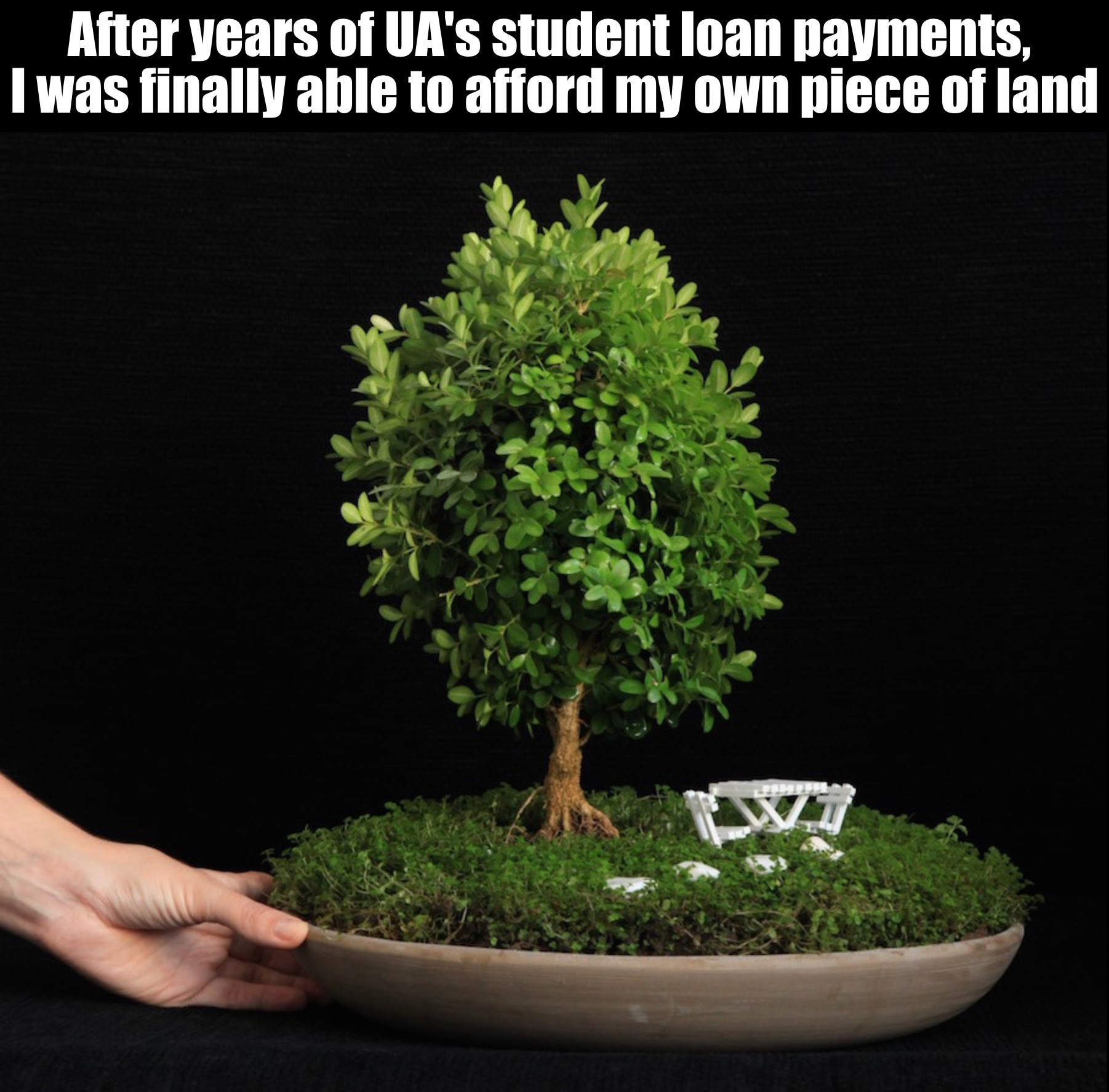 """Image of a tree with the message """"after years of UA's student loan payments, I was finally able to afford my own piece of land"""""""