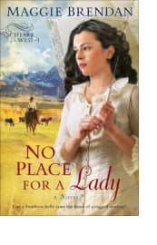 No Place for a Lady by Maggie Brendan