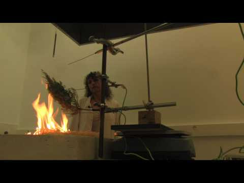 Des tests d'inflammabilité végétale pour faire face au risque incendie