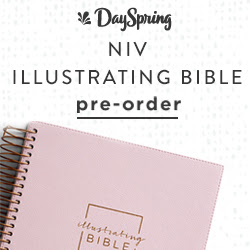 NIV Illustrating Bible - Pink