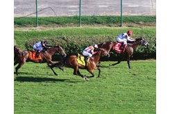 Turf racing at Churchill Downs