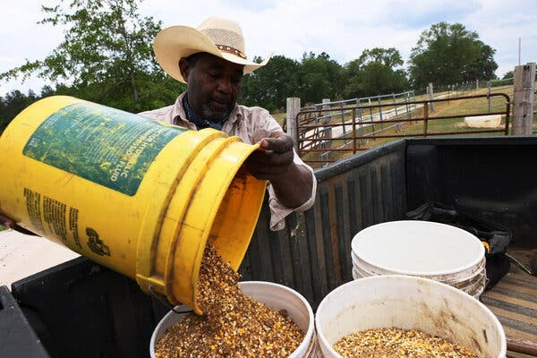Handy Kennedy, a farmer in Cobbtown, Ga., and founder of a cooperative of Black farmers. Debt relief approved by Congress in March aims to make amends for decades of financial discrimination against Black and other nonwhite farmers.