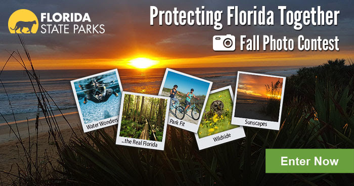 Protecting Florida Together Fall Photo Contest 2019