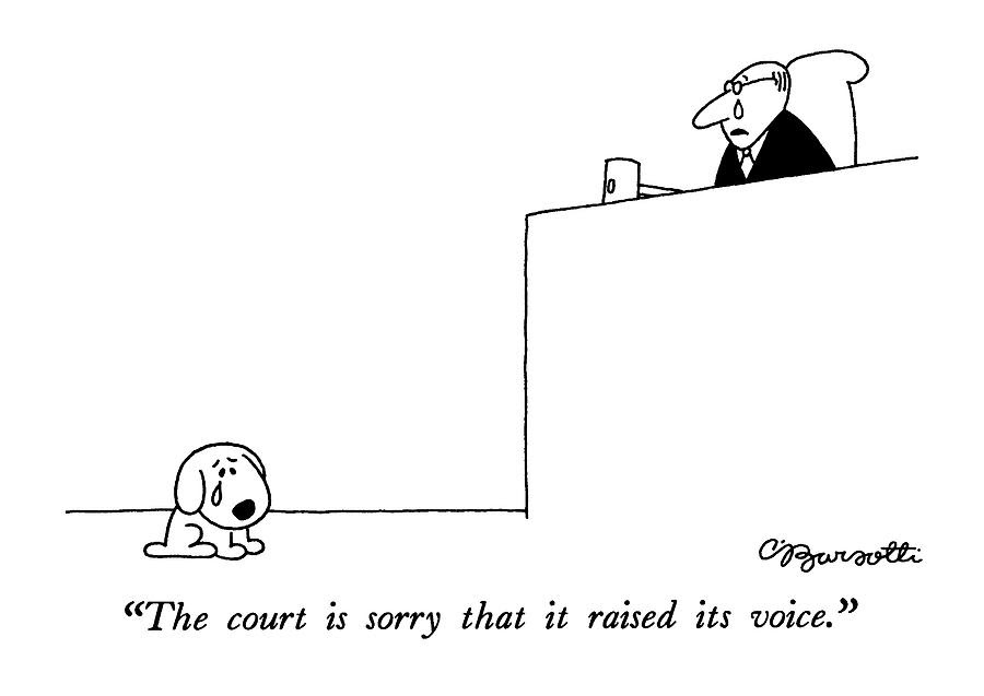 the-court-is-sorry-that-it-raised-its-vo