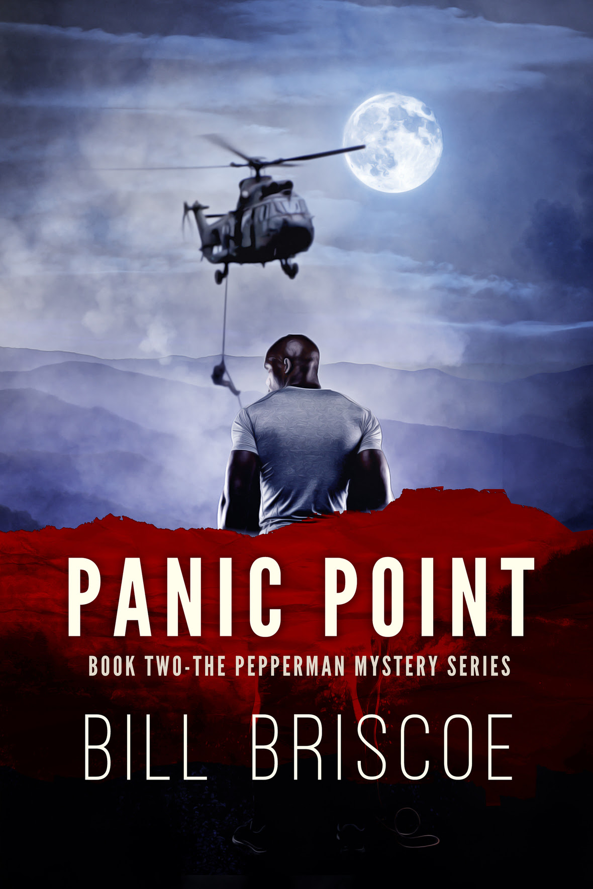 Cover Hi Res Panic Point