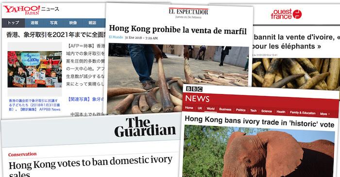Ivory+Media