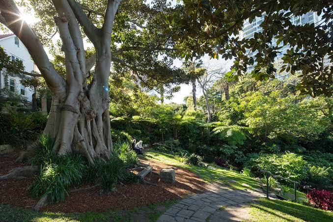 """Image result for wendy's secret garden"""""""