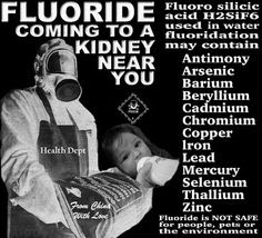 Fluoride kidneys