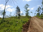 Missouri, Shannon County, 22.48 Acres Antler Ridge. TERMS $280/Month