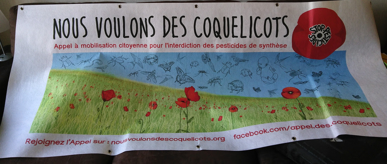 banderole_coquelicots1280