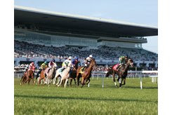 Horses head toward the backside at Arlington International Racecourse