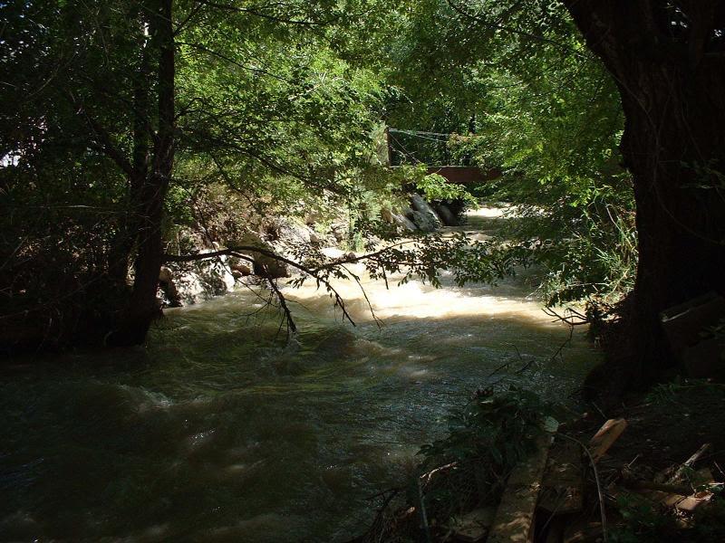 Bean river.JPG