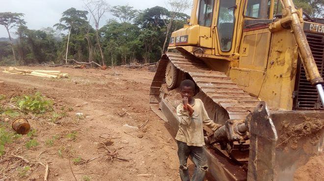 Un jeune garçon se tient à côté d'un bulldozer sur un terrain défriché dans la forêt tropicale
