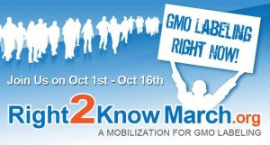 Right 2 Know March Poster
