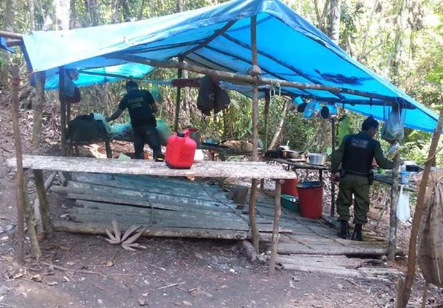 Rurópolis- PA, Brasil-  Polícias Civil e Militar resgatam pessoas em situação de trabalho escravo - Créditos: Ascom Polícia Civil