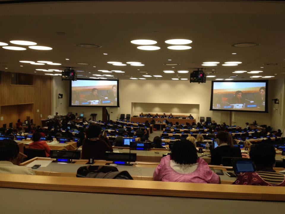 UN conf room 2014.jpg