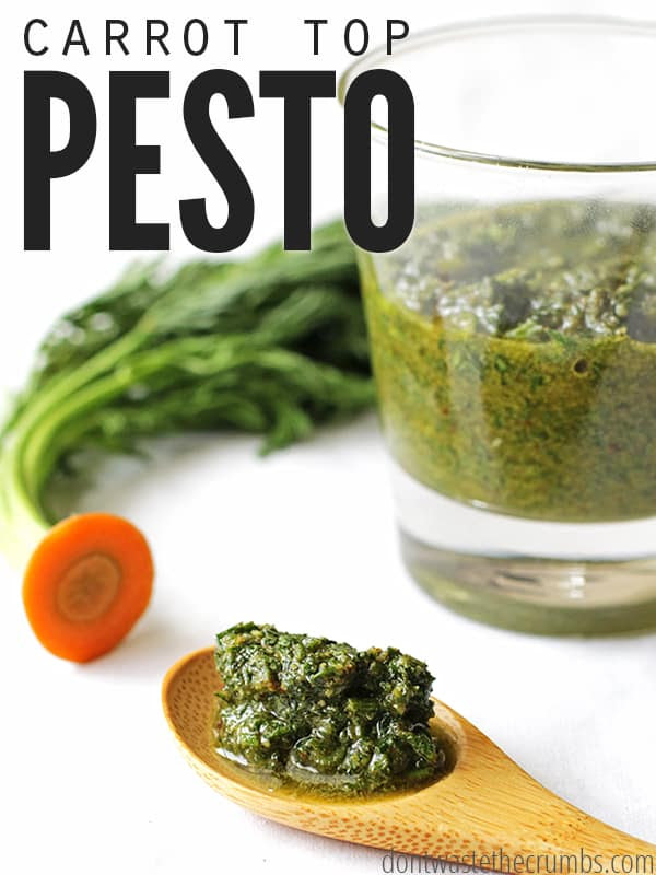 Image result for carrot top pesto