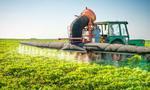 Monsanto Roundup in 75% of water and rain samples
