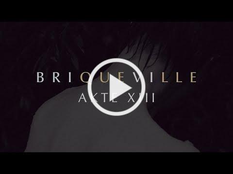 Briqueville - Akte XIII (Official Audio)