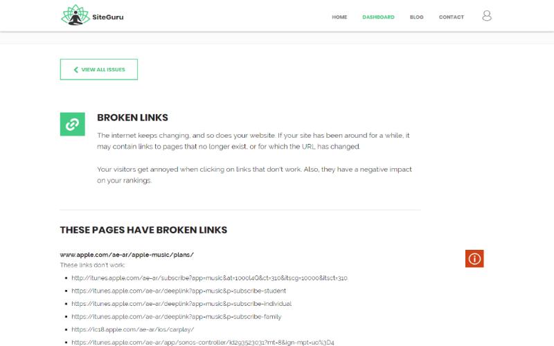 SiteGuru Website Auditor Preview 1