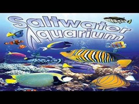 Ocean Aquarium Vision! - Coral Reef Fish at HOME Hqdefault