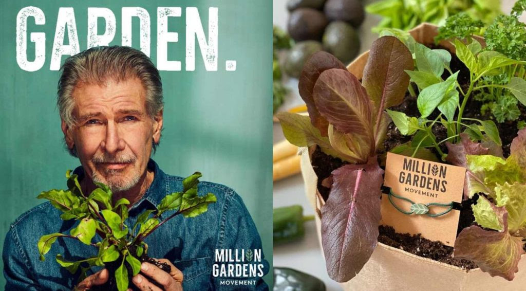 Growing Return To The Garden of Eden – By Neenah Payne Gar-1-1024x566