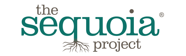 The Sequoia Project: Information Blocking and Interoperability Final Rules Are Here: Now What