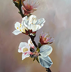 Meron Somers: Almond Blossoms