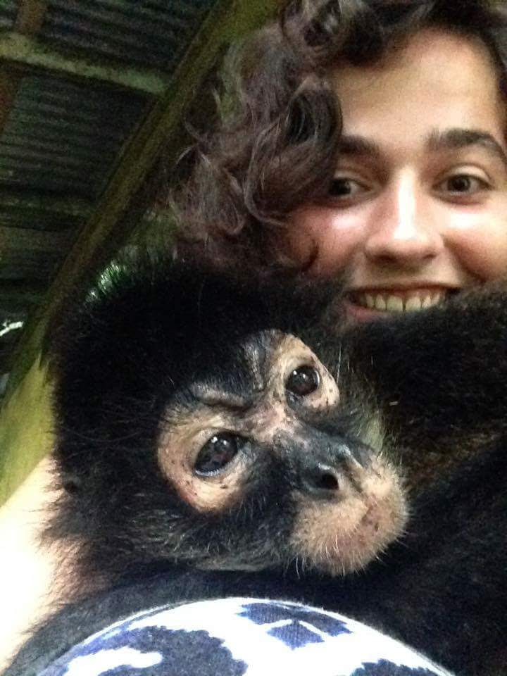 Cassie and Sweetie the spider monkey